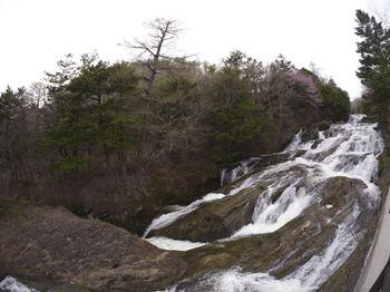 竜頭の滝上流.jpg